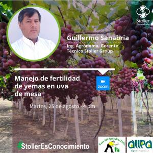 azUva - Guillermo Sanabria